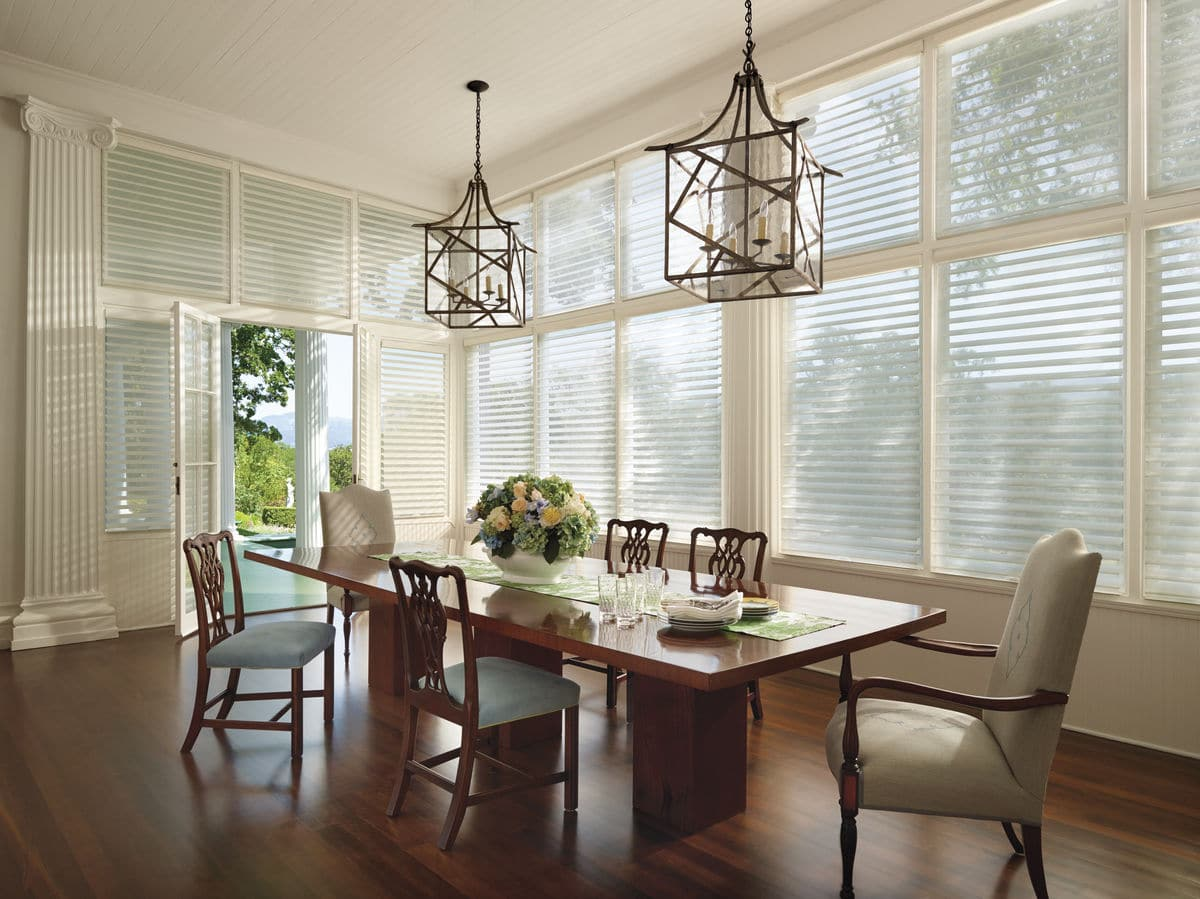 HunterDouglas by Shiretown Home Improvement Silhouette Shadings, Fabric/Material: Chateau